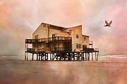 Condemned Art - Cottage of the Past by East Coast Barrier Islands Betsy A Cutler
