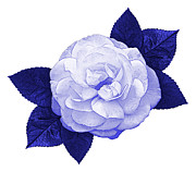 Blue And White Porcelain Prints - Cottage Rose Print by Jane McIlroy