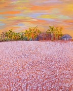 Eloise Schneider - Cotton at Sunset