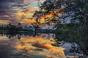 Bayou Digital Art - Cotton Bayou Sunrise by Michael Thomas