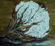 Still Life Paintings - Cotton Boll on Wood by Eloise Schneider