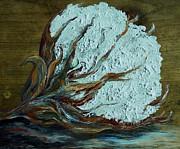 Cotton Boll On Wood Print by Eloise Schneider