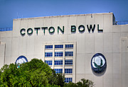 Keywords Prints - Cotton Bowl Print by David and Carol Kelly