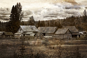 Barkerville Photos - Cottonwood House by Inge Riis McDonald