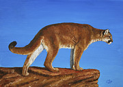 Big Cats Paintings - Cougar Cliff by Crista Forest