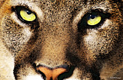 Washington Prints Prints - Cougar Eyes Print by Sharon Cummings