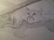 Hounds Originals - Cougar - Work In Progress by Tracy Theabolt