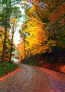 Julie Riker Dant Photos Posters - Country Autumn Gravel Road Poster by Julie Dant