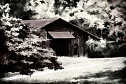 Shed Photo Framed Prints - Country Charm In Dramatci BW Framed Print by Darren Fisher