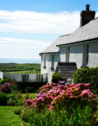 Charming Cottage Photos - Country Cottage in Wales by Annie Slentz