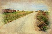 Dan Carmichael - Country Farm Road LD