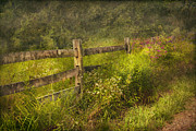 Country Prints - Country - Fence - County border  Print by Mike Savad