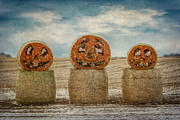 Jack-o-lanterns Photos - Country Halloween by Patti Deters