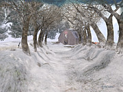 Kylie Sabra Metal Prints - Country Lane in Winter Metal Print by Kylie Sabra