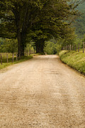 Park Scene Art - Country Lane - Smoky Mountains by Andrew Soundarajan