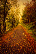 Autumn Digital Art Metal Prints - Country Lane v2 Metal Print by Adrian Evans