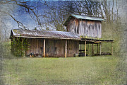 Barn Digital Art Posters - Country Life Poster by Betty LaRue