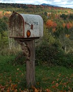 Mail Box Posters - Country Mail Box Poster by Donna Cavanaugh