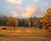 Autumn Scene Photos - Country Morning by Jai Johnson