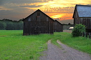 Old Barns Photo Prints - Country Road Print by Andrea Galiffi