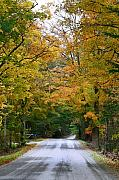 Fall Color Print Framed Prints - Country Road Fall Vermont Framed Print by Deborah Benoit