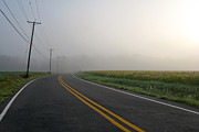 Morning Photos - Country Road in Fog by Olivier Le Queinec