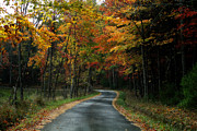 Brown Leaves Prints - Country Road Print by Melissa Petrey