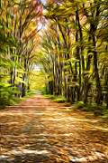 Colors Of Autumn Posters - Country Road Painting Poster by Christina Rollo