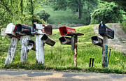Mail Box Framed Prints - Country Road Framed Print by Patricia Januszkiewicz