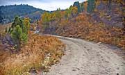 Steve Ohlsen - Country Road