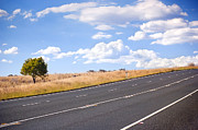 Australian Open Metal Prints - Country Road Metal Print by Tim Hester