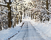 Winter Road Scenes Photo Prints - Country Road Win 27 Print by G L Sarti