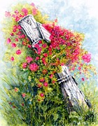 Cheery Mixed Media Posters - Country Rose Poster by Janine Riley