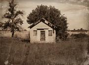 Julie Hamilton - Country School