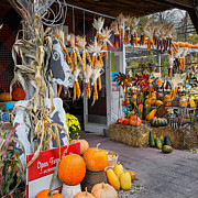 Autumn Decorations Posters - Country Store Poster by Bill  Wakeley