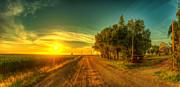 Country Sunrise Print by  Caleb McGinn