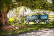 Greenish Posters - Country - The old wagon out back  Poster by Mike Savad