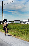 Amish Photography Posters - Country Transportation Poster by Skip Willits