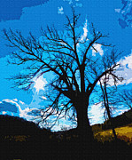 Brian Stevens - Country Tree