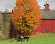 Maple Tree Photos - Country Wagon by Bill  Wakeley