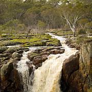 Tim Hester - Country Waterfall
