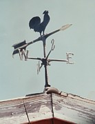Polk County Florida Photos - Country Weather Vane by Belinda Lee