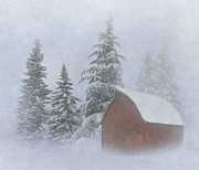 Barn Covered In Snow Framed Prints - Country Winter Framed Print by Angie Vogel