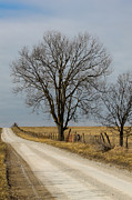 Rural Snow Scenes Prints - County Road in Winter 1 Print by Rick Grisolano Photography LLC