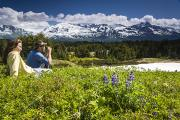 Enjoying Prints - Couple Sits In Meadow Amongst Print by Jeff Schultz