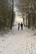 Couple In Snow Posters - Couple Walking In A Winter Wonderland Poster by Lee Avison