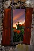 Old Barns Prints - Courtyard Window Print by Debra and Dave Vanderlaan