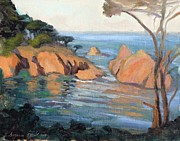 Suzanne Elliott - Cove at Point Lobos...
