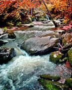 Jeff McJunkin - Cove Creek Saluda NC