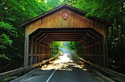 Lakeshore Framed Prints - Covered Bridge at Sleeping Bear Dunes National Lakeshore Framed Print by Terri Gostola